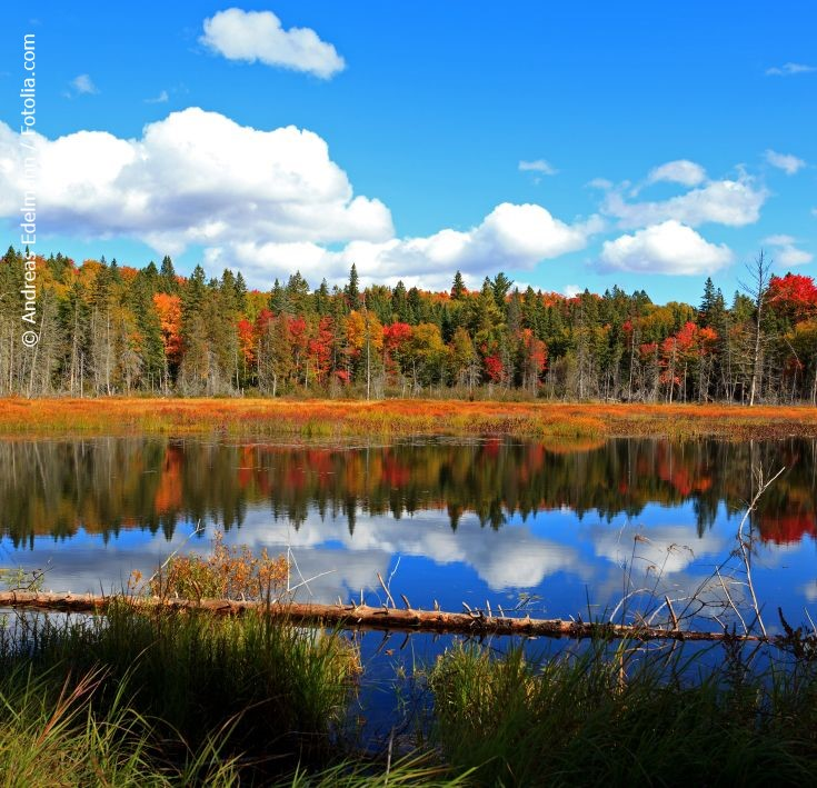 Colourful Canada – Aktiverlebnis Indian Summer