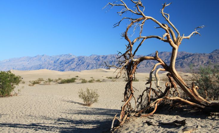 Wandern in Kalifornien – Death Valley- und Yosemite-Nationalpark