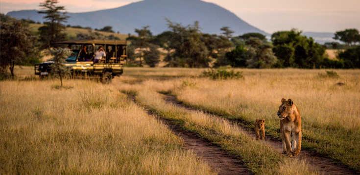 Safaris & Traumstrände zwischen Serengeti & Sansibar - Zeltvariante