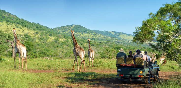 Kapstadt, Garden Route & Safaris
