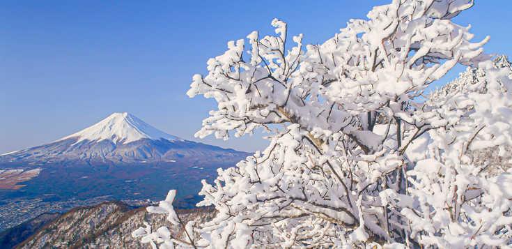 Exklusive Winterportraits - Naturwunder Hokkaido & Honshu