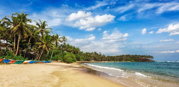 Tropisches Paradies voller Kontraste