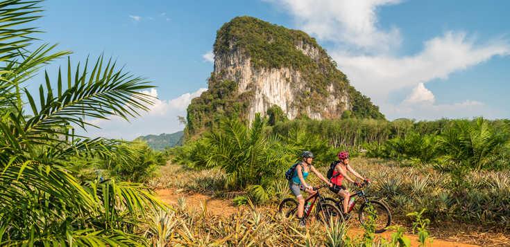 Südthailand - Exotik unter Palmen