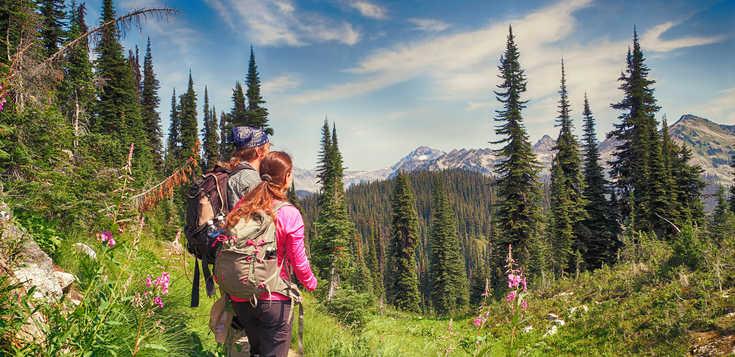 Berge, Canyons, Gletscherseen - Zu den schönsten Pässen Kanadas