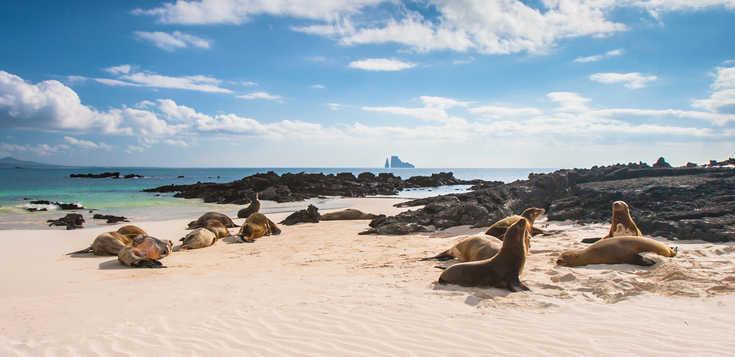 Facettenreiches Ecuador: Vulkanwelten & Tierparadies Galapagos
