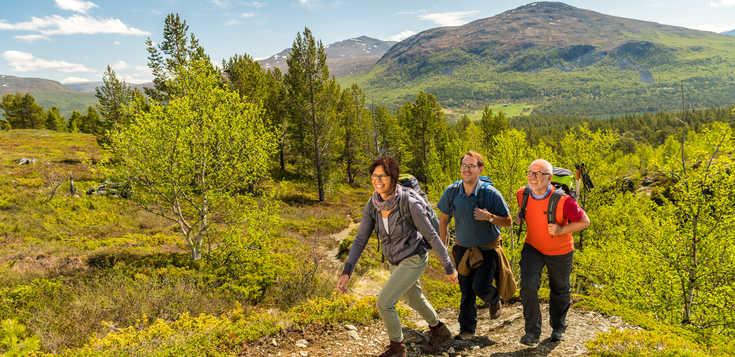 Jotunheimen: Wandern intensiv
