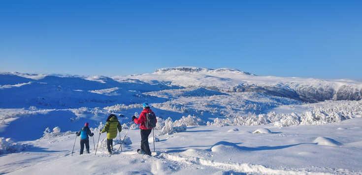 Einfach Geil(o) - Winter-Erlebnisse in Norwegen