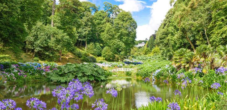 Cornwalls schönste Gärten erwandern