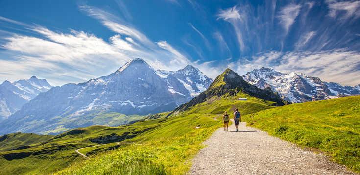 Auf dem Bärentrek durch die Alpen
