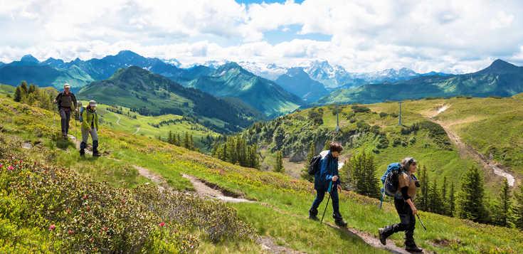 Symphonie in Grün - der Bregenzer Wald im Vorarlberg
