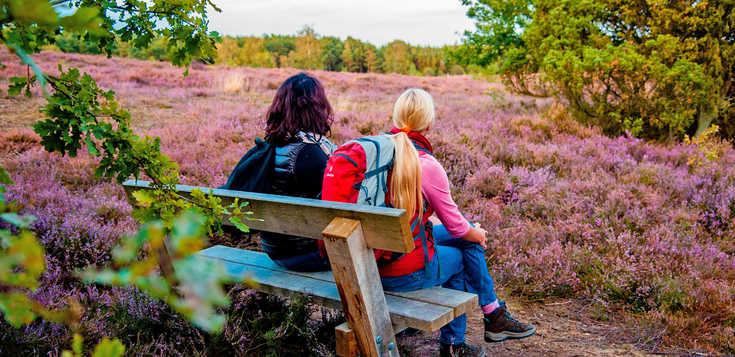Urlaub in Balance: Lüneburger Heide