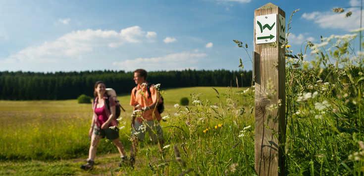 Oh du schöner Westerwald - mehr als nur Wald!