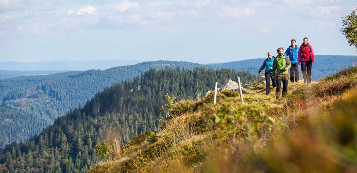 Schwarzwald - raus aus den Schluchten, rauf auf die Berge!