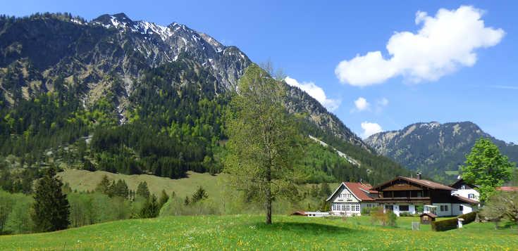 Typisch Allgäu: Felslandschaft über grünen Almen