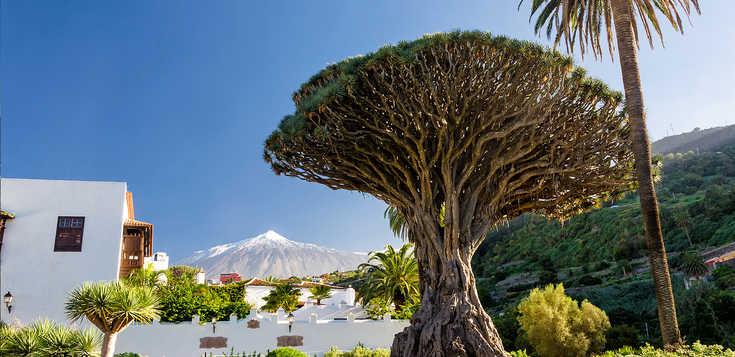 Teide und Traditionen - das ist Teneriffa