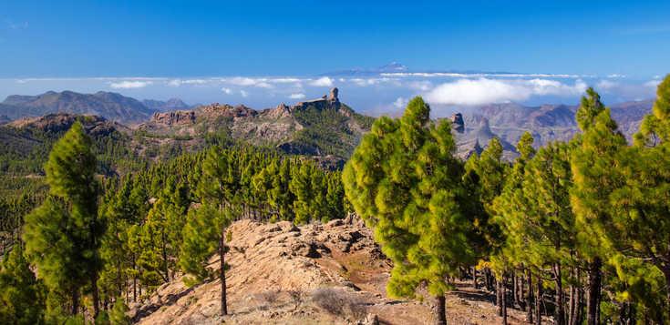 Die grandiose Bergwelt Gran Canarias