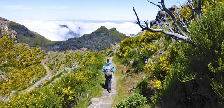 Madeira: Madeira intensiv - Inseltrekking