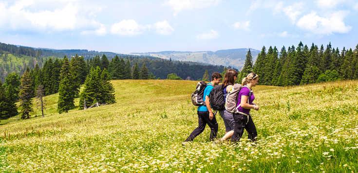 Deutschland: Kultweg im Schwarzwald: der Westweg