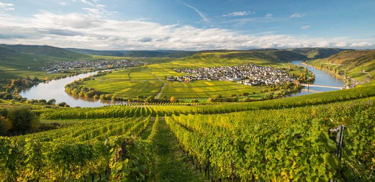 Deutschland: Moselsteig: im romantischen Moseltal