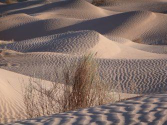 Sandformationen