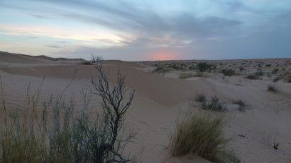Reisebericht: Wüstentrekking in Tunesien