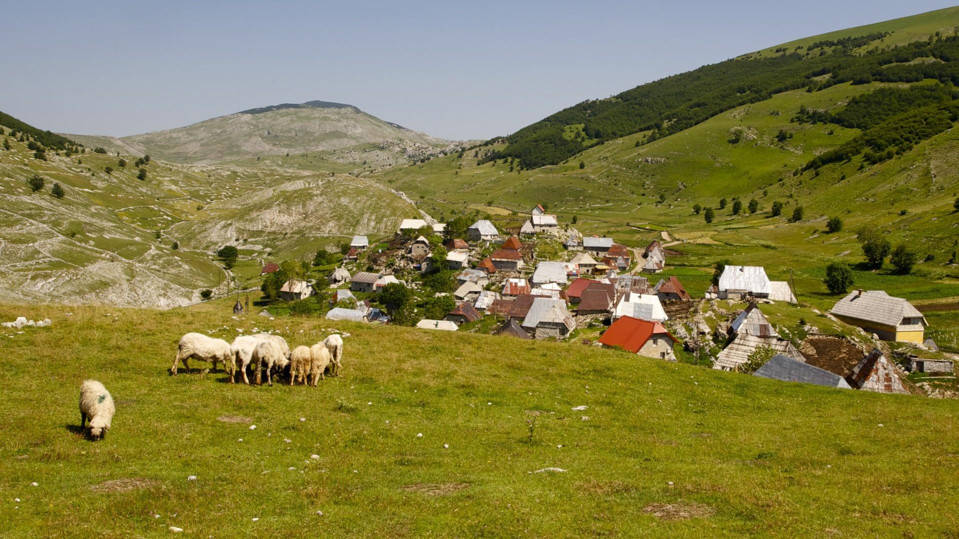 Trekking auf dem Balkan: Von Serbien nach Kroatien