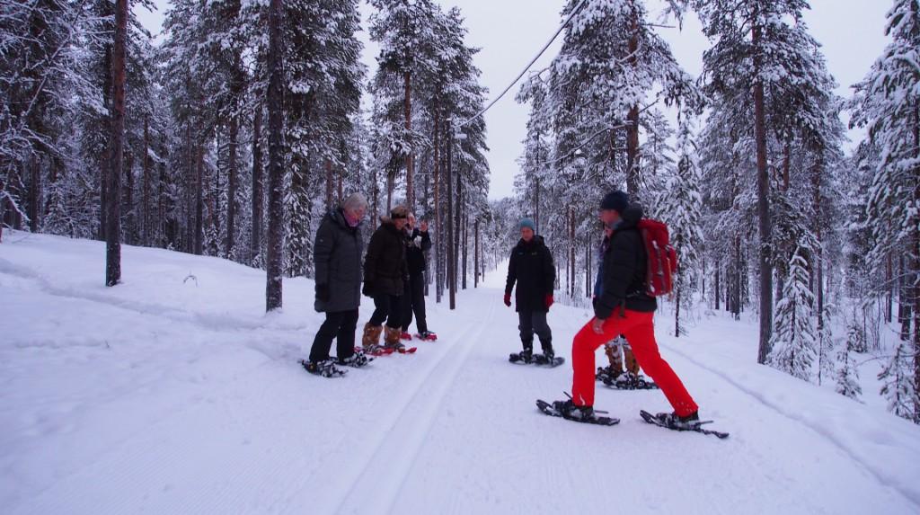 Gesundheitswandern mit Schneeschuhen