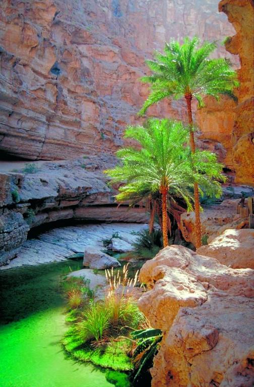 Wadi in Jordanien