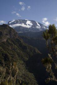 Erster Blick auf den Kilimanjaro