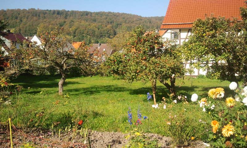 Bauerngarten in Lutter