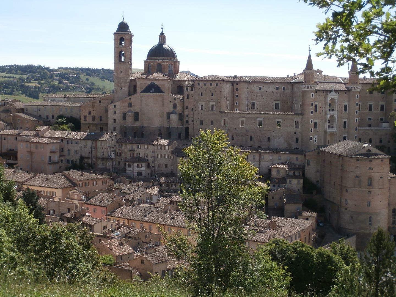 Blick auf Urbino