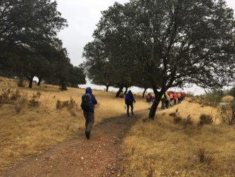 Wandern in der Dehesa