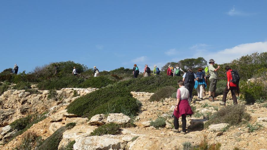 Aktiv und entspannt auf Mallorca