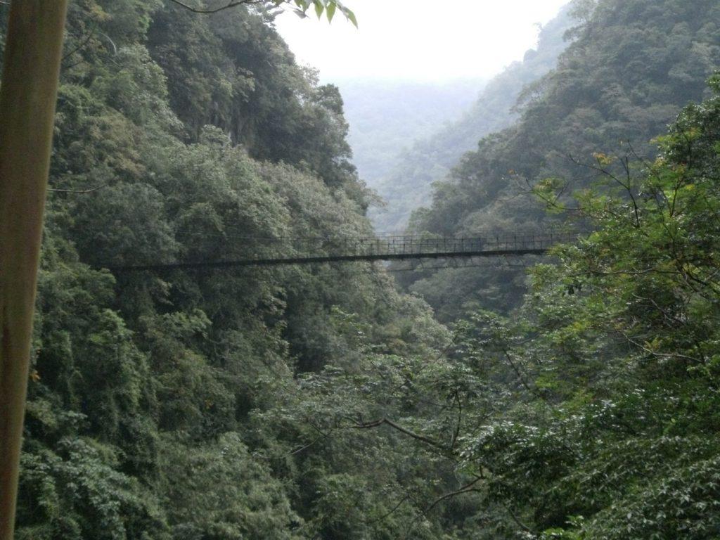 Hängebrücke über der Tarokkschlucht