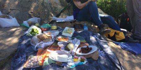 Picknick zwischendurch