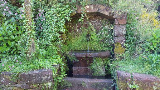Brunnen Rabacal