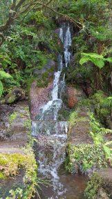 Quellen Wasserlauf Rabacal