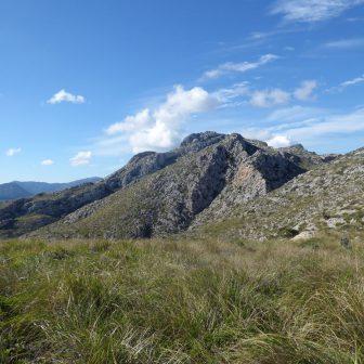 Auf dem Weg zum Puig Aguila