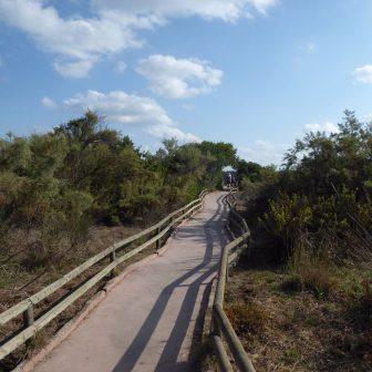 Unterwegs im Naturpark Albufera