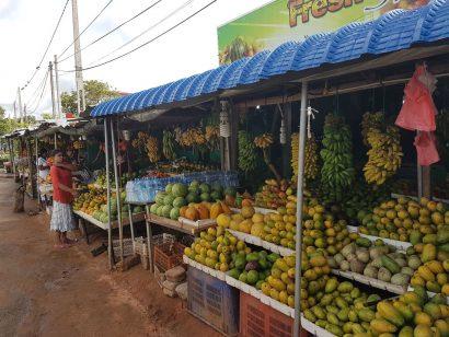 Kulinarische Höhepunkte Sri Lankas