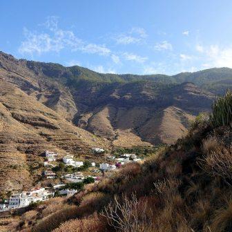 El Risco & Tamadaba-Forst