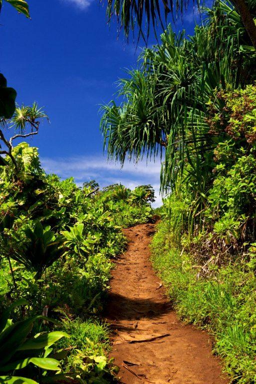 Auf dem Kalalau-Trail