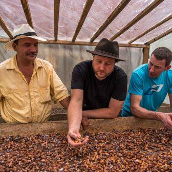 Fermentierung der Bohnen