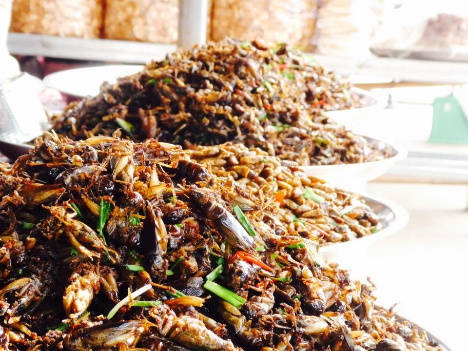 Geröstete Insekten