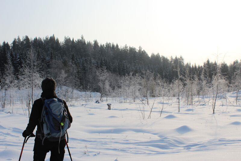 Schneeschuhwanderung, Umgebung Rantasalmi in Finnland