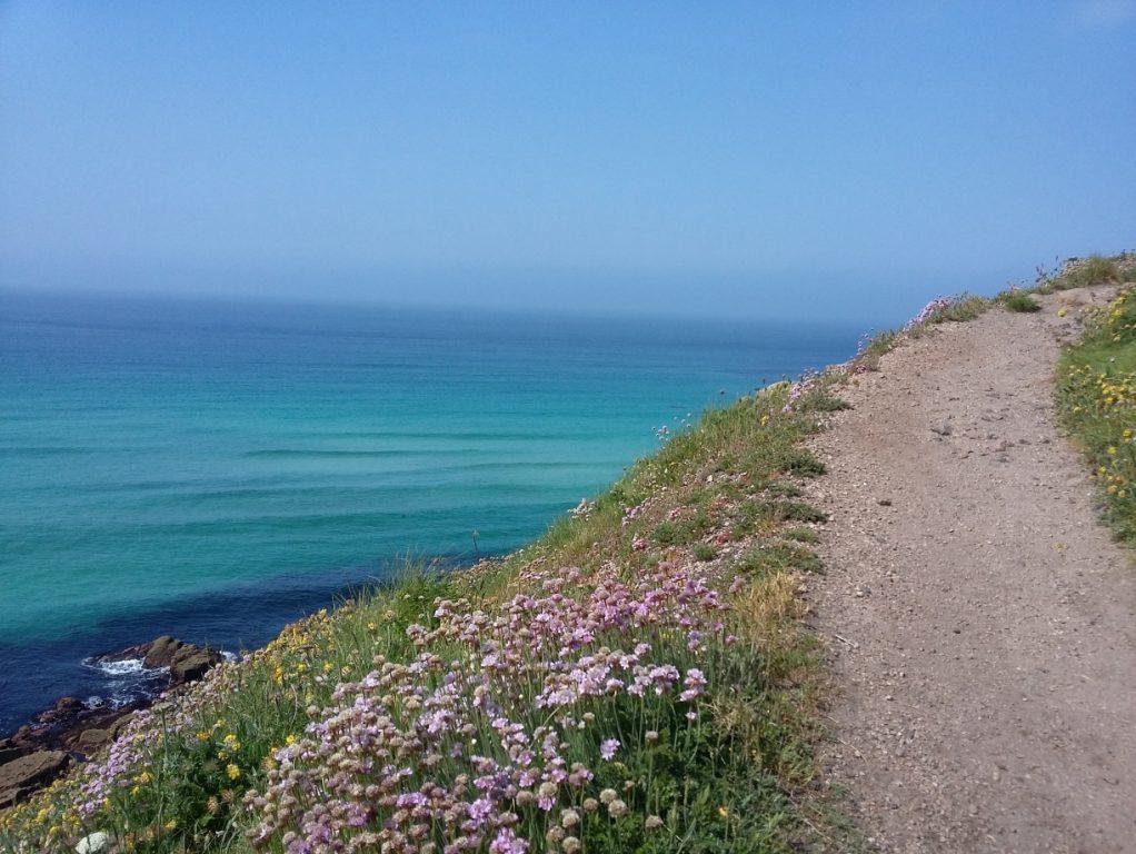 Traumhafter Küstenpfad bei der Reise 7822