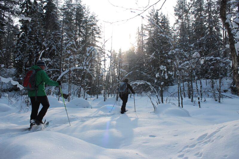 Winter in Finnland: Schneeschuhwanderung mit Gruppe
