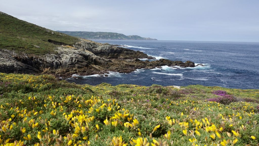 Schroffe Küsten und kleine Buchten