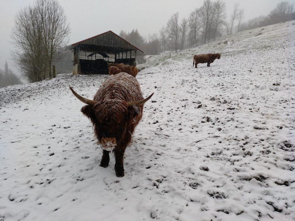 Auch im Winter spannend: Wandern am Staffelberg in Franken