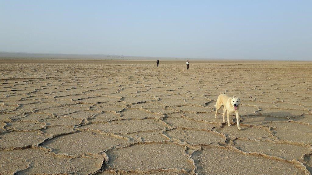 Trekking in der Namak Salzwüste